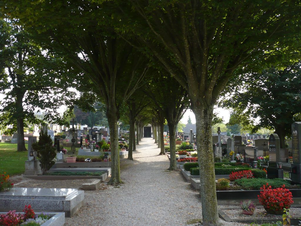 Gräberreihe unter Bäumen auf dem Friedhof St. Leonhard am Forst